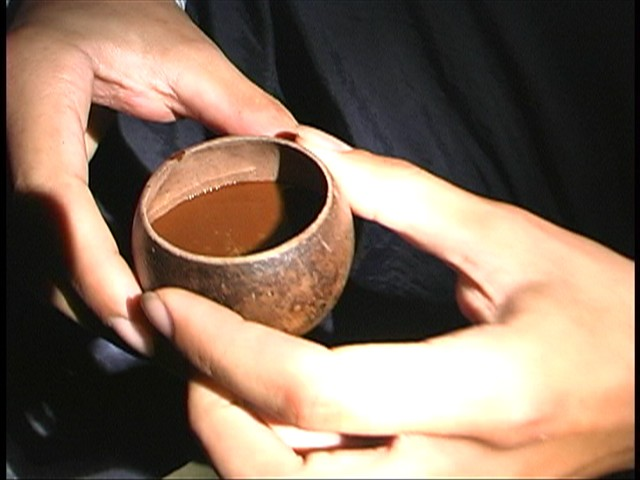 I benefici veri e propri del bere Ayahuasca